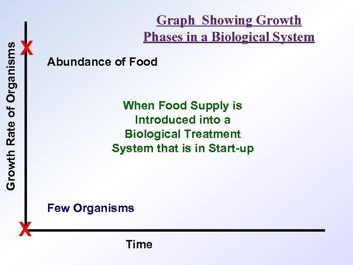 Growth Rate of Organisms X Graph Showing Growth Phases in a Biological System Abundance