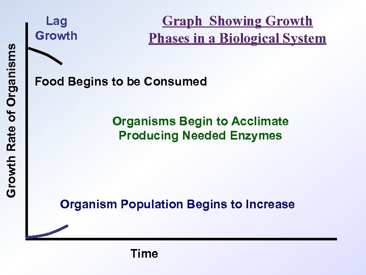Growth Rate of Organisms Lag Growth Graph Showing Growth Phases in a Biological System