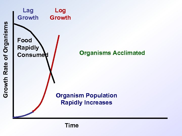 Growth Rate of Organisms Lag Growth Log Growth Food Rapidly Consumed Organisms Acclimated Organism