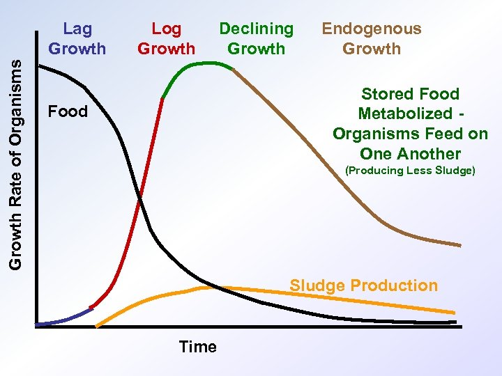 Growth Rate of Organisms Lag Growth Log Growth Declining Growth Endogenous Growth Stored Food