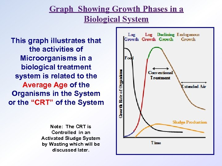 Graph Showing Growth Phases in a Biological System This graph illustrates that the activities