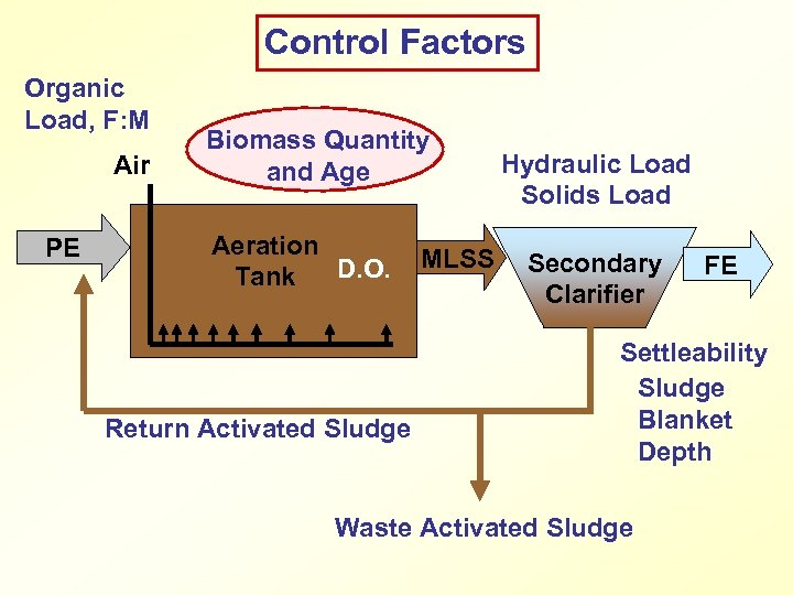 Control Factors Organic Load, F: M Air PE Biomass Quantity and Age Aeration D.