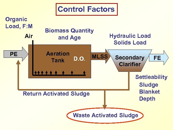 Control Factors Organic Load, F: M Air PE Biomass Quantity and Age Aeration D.