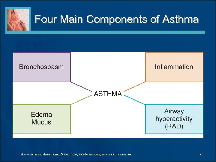 Four Main Components of Asthma Elsevier items and derived items © 2011, 2007, 2006