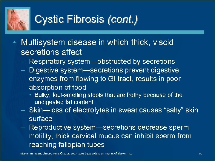 Cystic Fibrosis (cont. ) • Multisystem disease in which thick, viscid secretions affect –