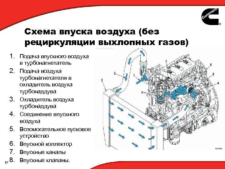 Схема впуска воздуха (без рециркуляции выхлопных газов) 1. Подача впускного воздуха 2. 3. 4.
