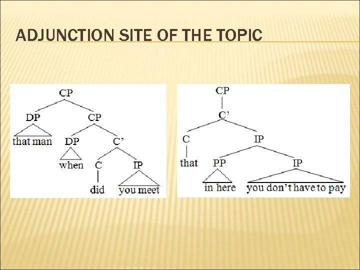 ADJUNCTION SITE OF THE TOPIC