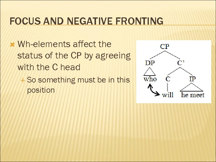 FOCUS AND NEGATIVE FRONTING Wh-elements affect the status of the CP by agreeing with