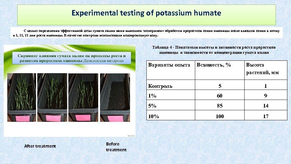 Experimental testing of potassium humate С целью определения эффективной дозы гумата калия нами выполнен