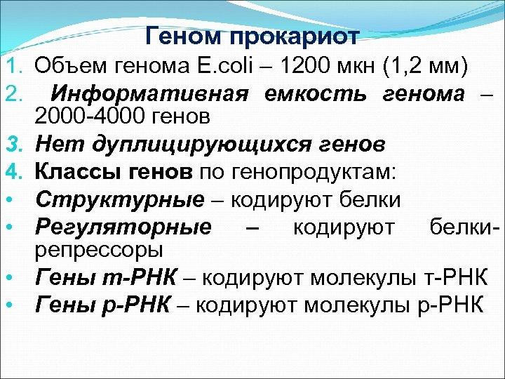 Геном прокариот 1. Объем генома E. coli – 1200 мкн (1, 2 мм) 2.