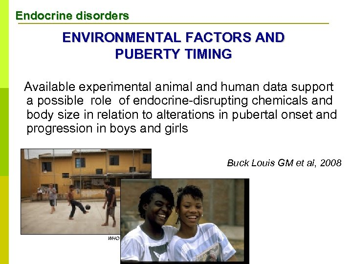 Endocrine disorders ENVIRONMENTAL FACTORS AND PUBERTY TIMING Available experimental animal and human data support