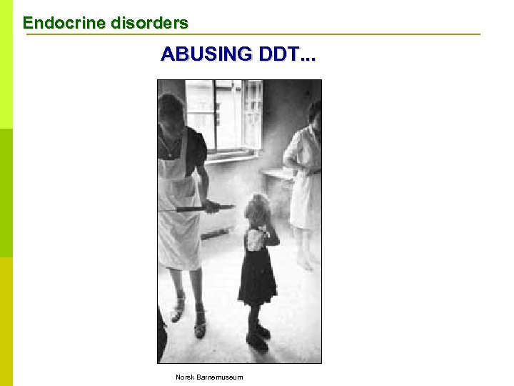 Endocrine disorders ABUSING DDT. . . Norsk Barnemuseum
