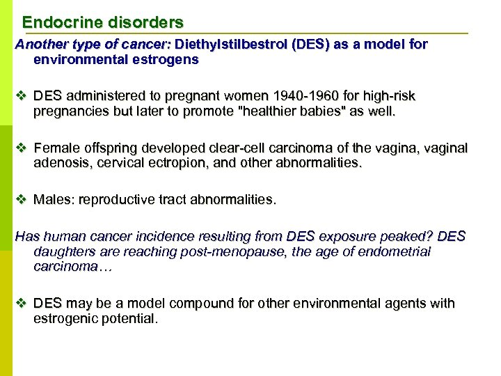 Endocrine disorders Another type of cancer: Diethylstilbestrol (DES) as a model for environmental estrogens