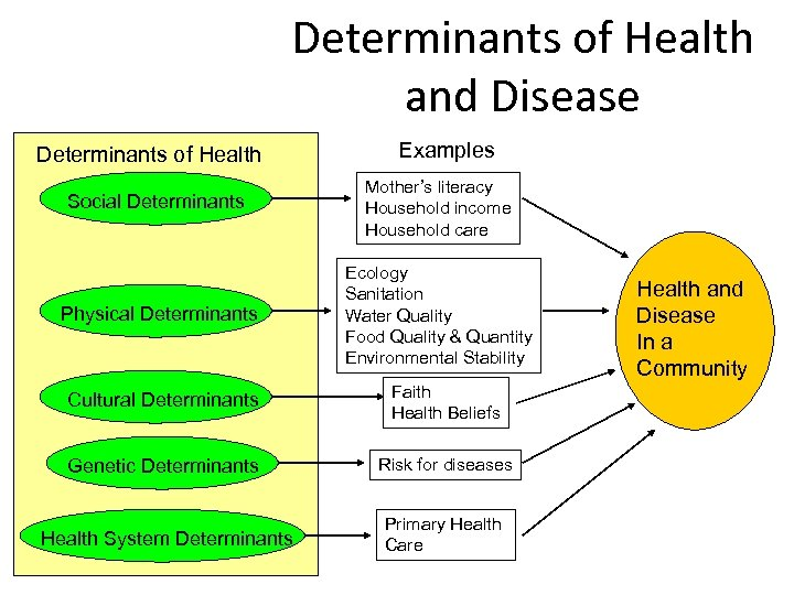 Determinants of Health and Disease Determinants of Health Examples Social Determinants Mother's literacy Household
