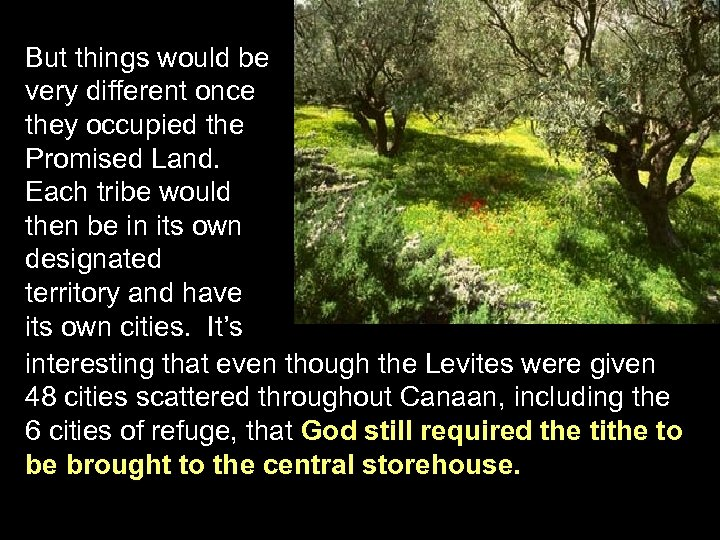 But things would be very different once they occupied the Promised Land. Each tribe