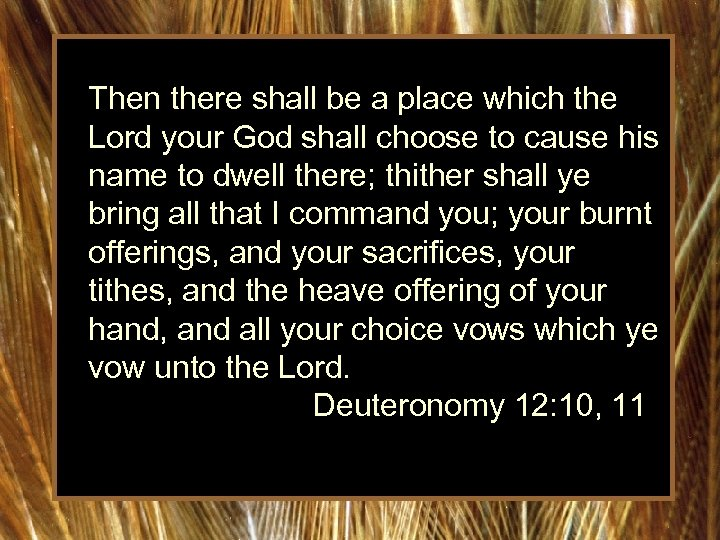 Then there shall be a place which the Lord your God shall choose