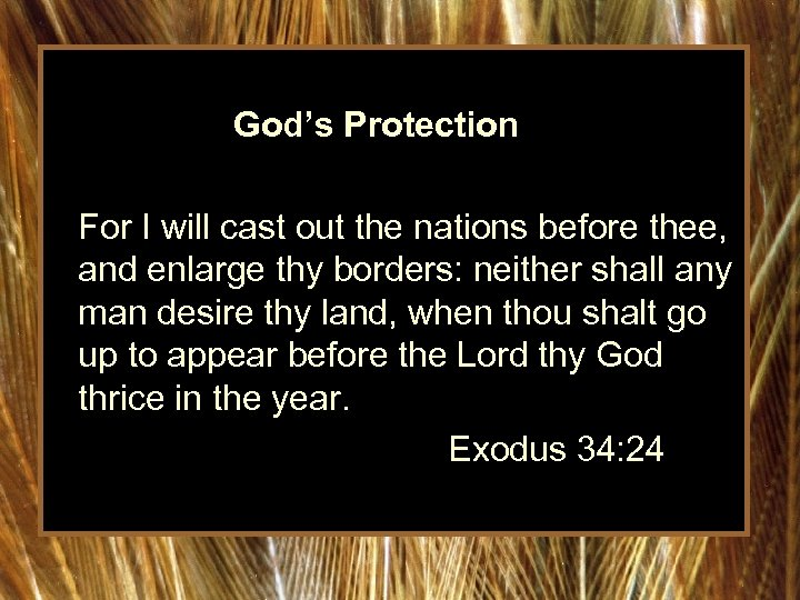 God's Protection For I will cast out the nations before thee, and enlarge thy