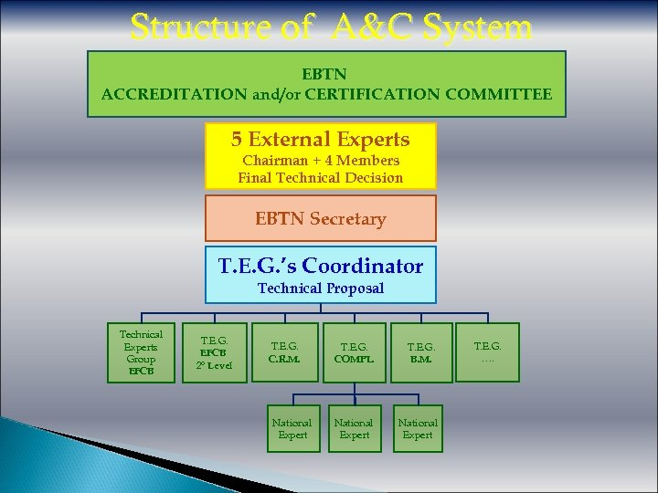 Structure of A&C System EBTN ACCREDITATION and/or CERTIFICATION COMMITTEE 5 External Experts Chairman +