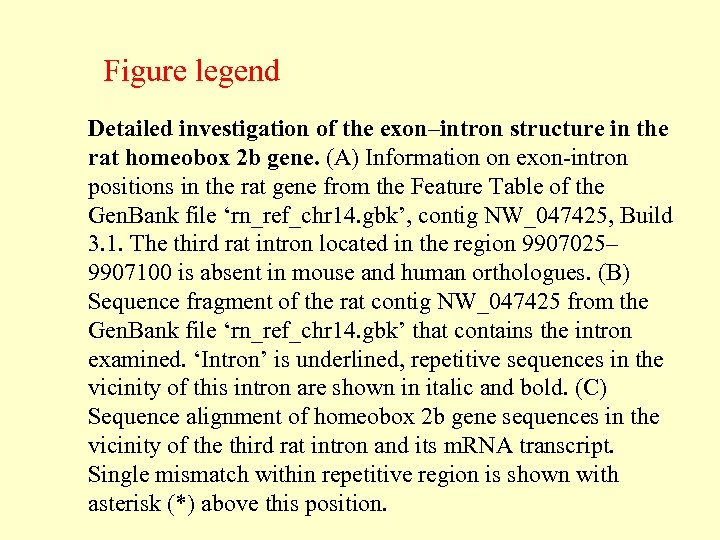 Figure legend Detailed investigation of the exon–intron structure in the rat homeobox 2 b