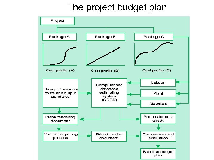 The project budget plan