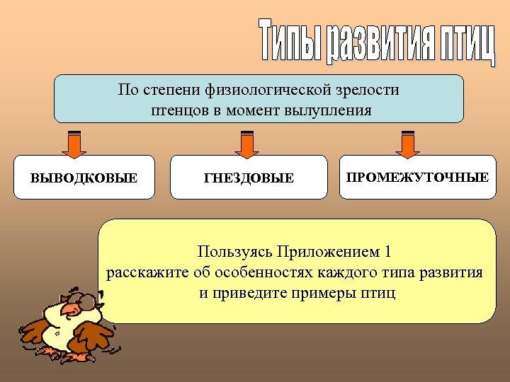 По степени физиологической зрелости птенцов в момент вылупления ВЫВОДКОВЫЕ ГНЕЗДОВЫЕ ПРОМЕЖУТОЧНЫЕ Пользуясь Приложением 1