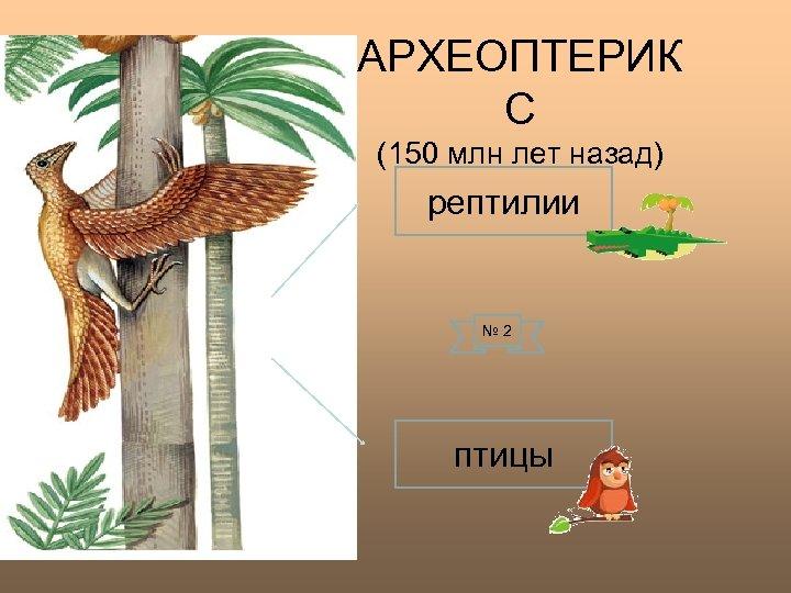 АРХЕОПТЕРИК С (150 млн лет назад) рептилии № 2 птицы