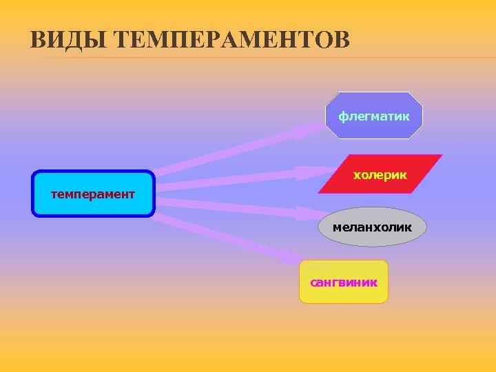 ВИДЫ ТЕМПЕРАМЕНТОВ флегматик холерик темперамент меланхолик сангвиник