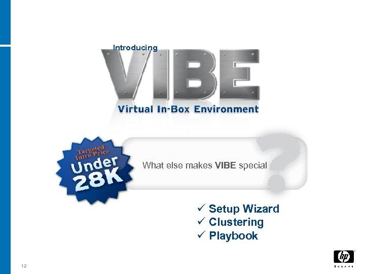 Introducing What else makes VIBE special ü Setup Wizard ü Clustering ü Playbook 12