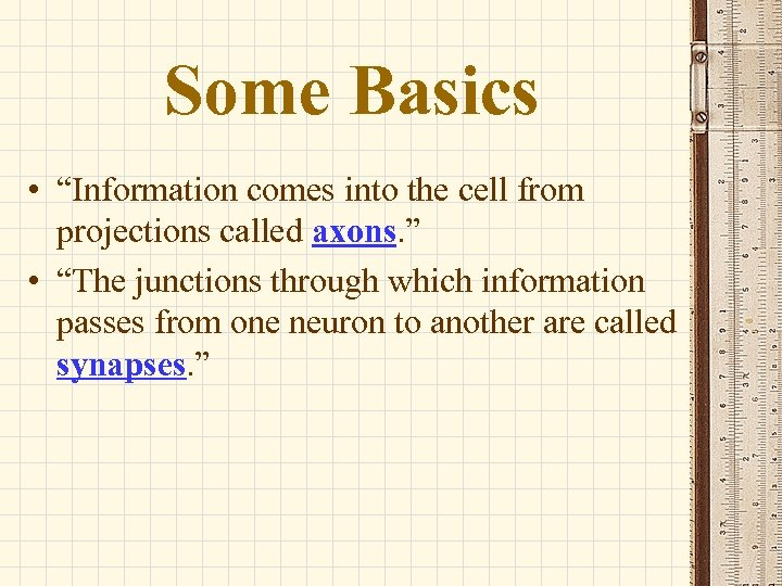 """Some Basics • """"Information comes into the cell from projections called axons. """" •"""