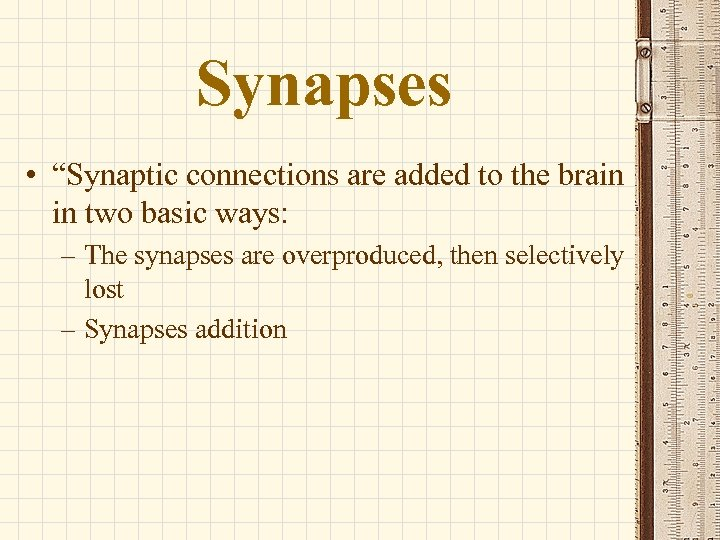 """Synapses • """"Synaptic connections are added to the brain in two basic ways: –"""