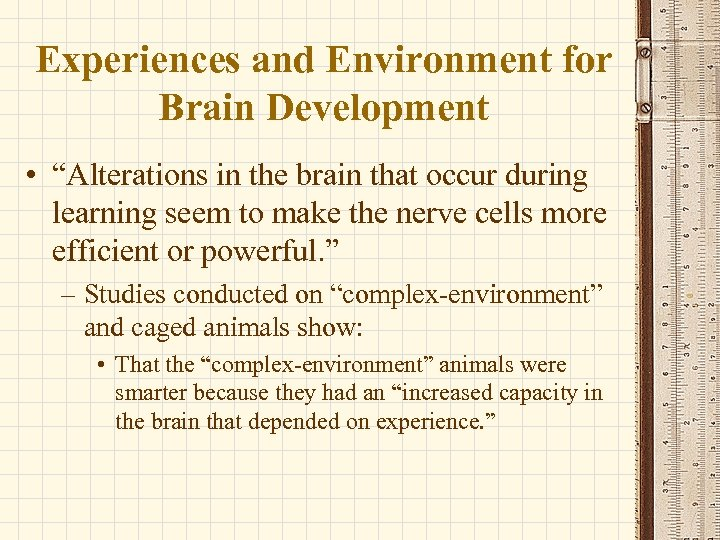 """Experiences and Environment for Brain Development • """"Alterations in the brain that occur during"""