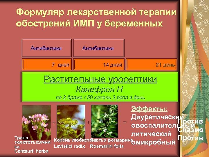 Формуляр лекарственной терапии обострений ИМП у беременных Антибиотики 7 дней Антибиотики 14 дней 21