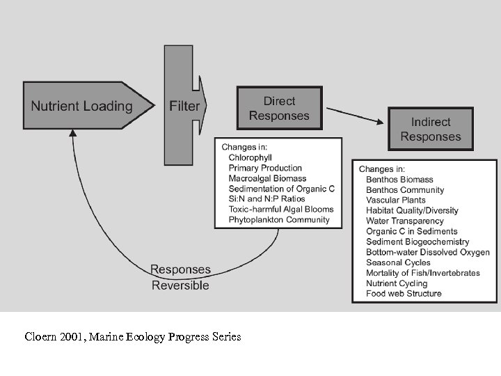 Cloern 2001, Marine Ecology Progress Series
