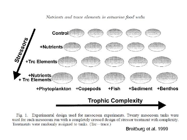 Breitburg et al. 1999
