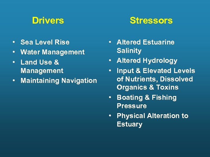 Drivers • • • Sea Level Rise Water Management Land Use & Management •