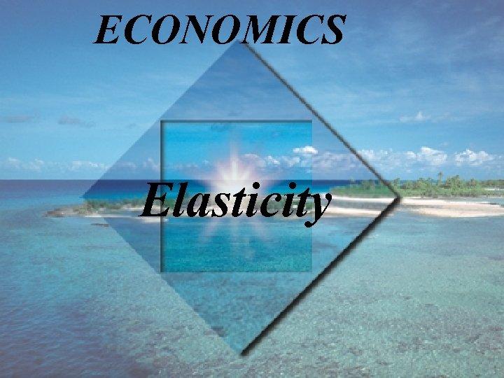 ECONOMICS Elasticity
