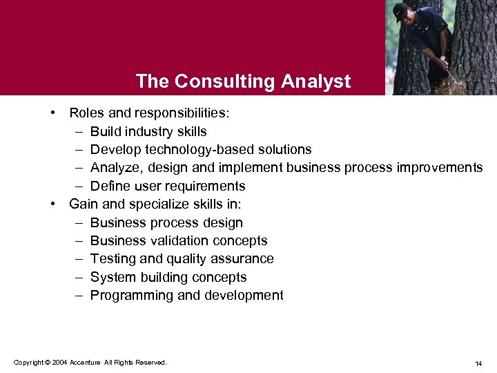 The Consulting Analyst • Roles and responsibilities: – Build industry skills – Develop technology-based
