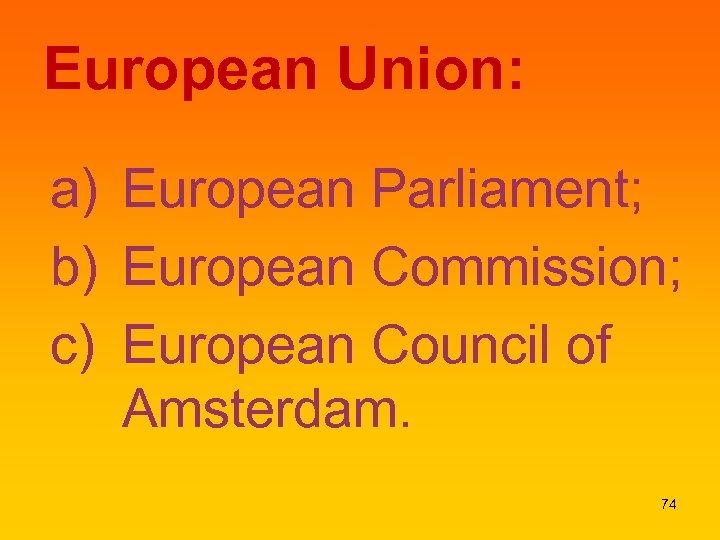 European Union: a) European Parliament; b) European Commission; c) European Council of Amsterdam. 74