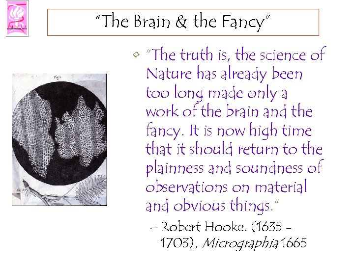 """The Brain & the Fancy"" • ""The truth is, the science of Nature has"