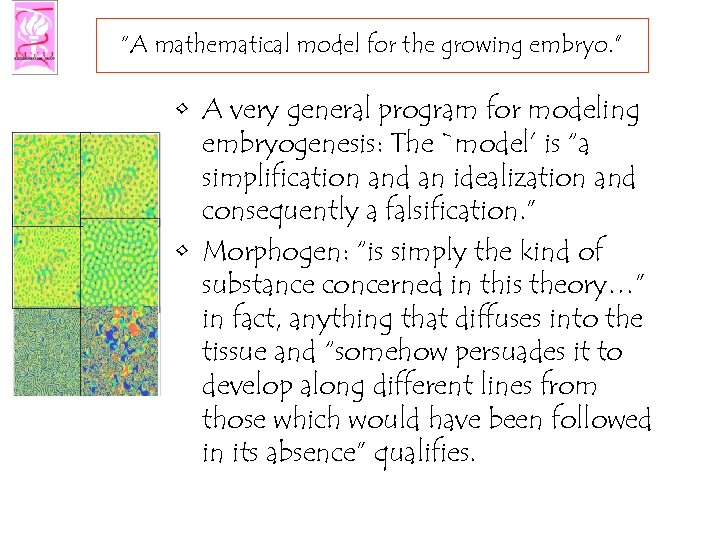 """A mathematical model for the growing embryo. "" • A very general program for"