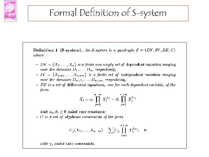 Formal Definition of S-system
