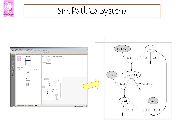 Sim. Pathica System