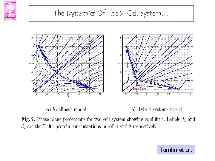 The Dynamics Of The 2 -Cell System… Tomlin et al.