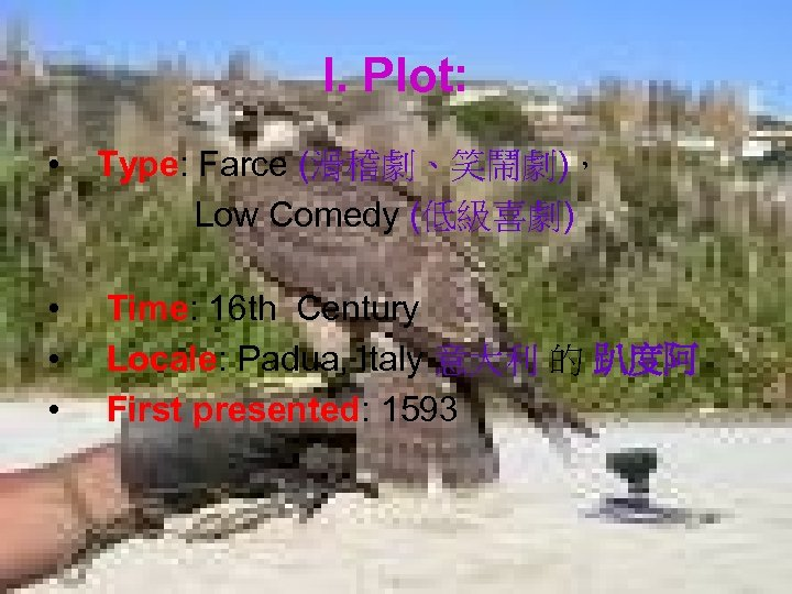I. Plot: • Type: Farce (滑稽劇、笑鬧劇), Low Comedy (低級喜劇) • • • Time: 16
