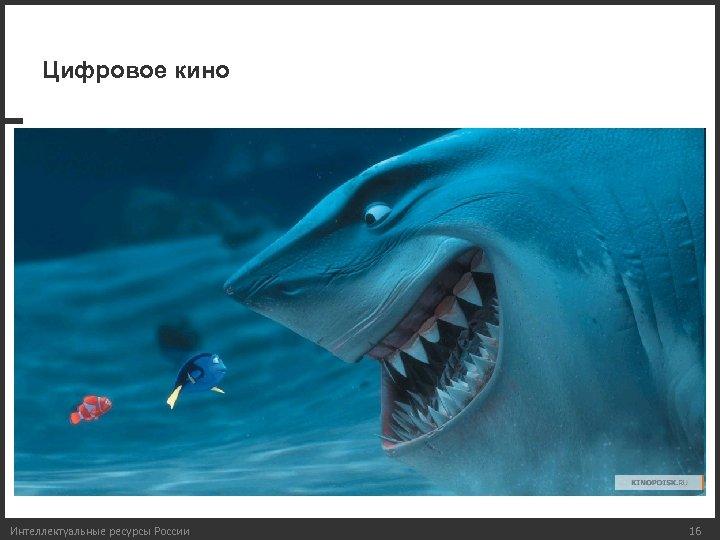 Цифровое кино Интеллектуальные ресурсы России 16