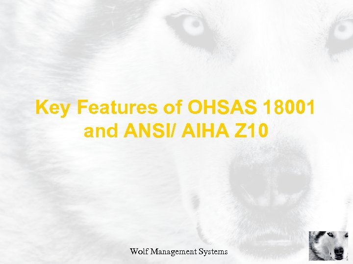 Key Features of OHSAS 18001 and ANSI/ AIHA Z 10 Wolf Management Systems