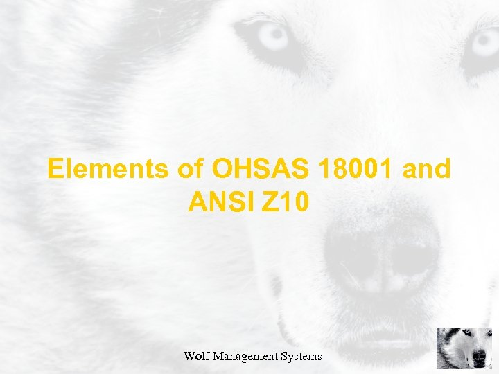 Elements of OHSAS 18001 and ANSI Z 10 Wolf Management Systems