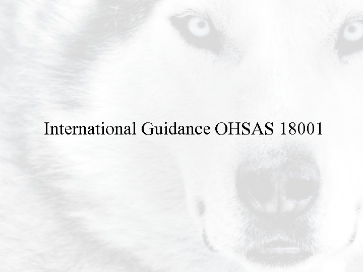 International Guidance OHSAS 18001