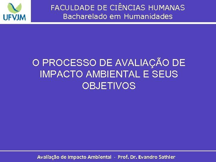 FACULDADE DE CIÊNCIAS HUMANAS Bacharelado em Humanidades O PROCESSO DE AVALIAÇÃO DE IMPACTO AMBIENTAL