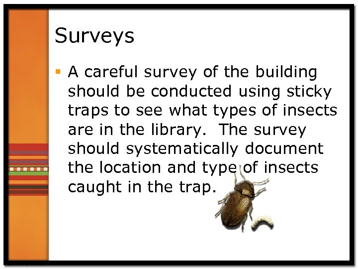 Surveys § A careful survey of the building should be conducted using sticky traps